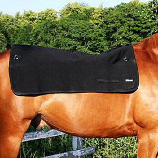 Picture of 2100 Back On Track:Horseback Warmer