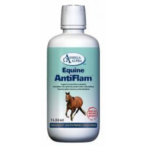 Picture of 253308 Omega Alpha Equine ANTIFLAM™