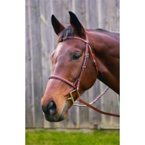 Picture of HDR Advantage Plain Raised Bridle With Laced Riens