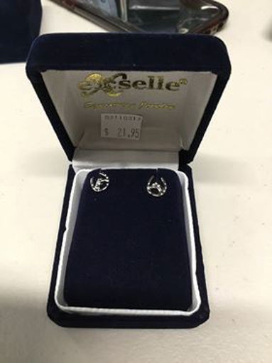 Picture of Exselle Equestrain Jewelry Horseshoe with Horse Head Stud Earings