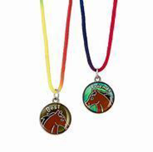 Picture of Colour Changing Mood Jewelery Necklace's
