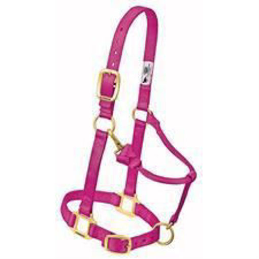Picture of 35-7033 Weaver Adjustable Halter: Yearling Size