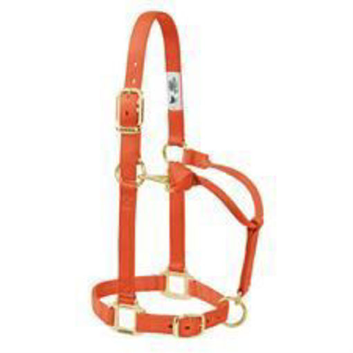 Picture of 35-1030 Weaver Leather Suckling Halter